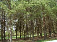 A wooded 1/2 + or - acre in the Ceder Cove Estates