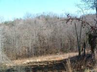 LAND... TWO TRACTS ONE PRICE Many wooded homesites on