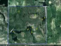 Woods County 160 acres lots of trees with excellent