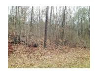 This 5 acre homesite is found on Highway 5 in