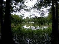 Located between Fort Adams and Lake Mary, 4 miles W of