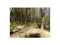 Looking for a hunting or recreational property in the