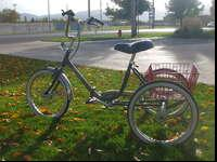 This is a Workman Cycles Trike in great condition with
