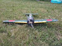 Intermediate/Advanced plane. Comes with transmitter and