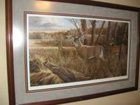 Set Of Five Beautifly framed Prints by Ron Van Gilder,