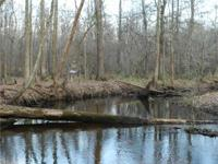 - Game Paradise w/ Excellent Hunting - 2+ Miles of