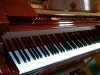 Wurlitzer Baby Grand Piano With Leather Bench - $5,500