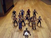 I have 15 wwe actionfigures  (Stone Cold) Steve Austin,