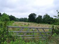 Over 20 acres of level & established pasture land in