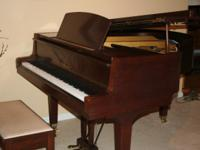"Classy 5' 3"" Yamaha GH1 in American Walnut. This piano"