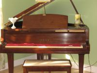Yamaha Baby Grand Piano in beautiful polished American