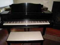 Superb Yamaha (C3)Conservatory Grand a little over 6