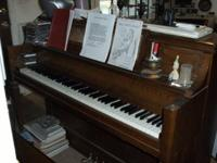 I am a professional church organist, classical pianist,