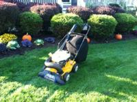 Cub Cadet yard vac and chipper. Great shape used 1