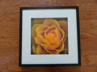 Yellow rose framed picture $30 Black frame is 19 x 19