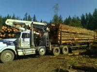 Timber Markets are up- highest in 15 years! Now is the