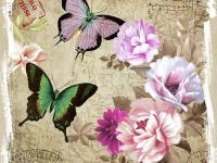 Colorful butterflies printed in lavender, green and