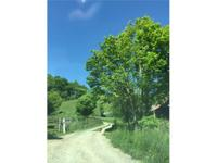 17.74 ACRES IN WESTERN WATAUGA COUNTY. Private,