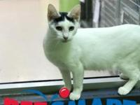 Zoey's story I am located at Janesville PetSmart! If