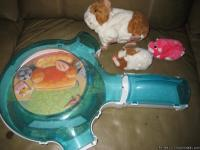 HI.....THIS IS A SET OF ZSU ZSU PETS STUFF FOR SALE: